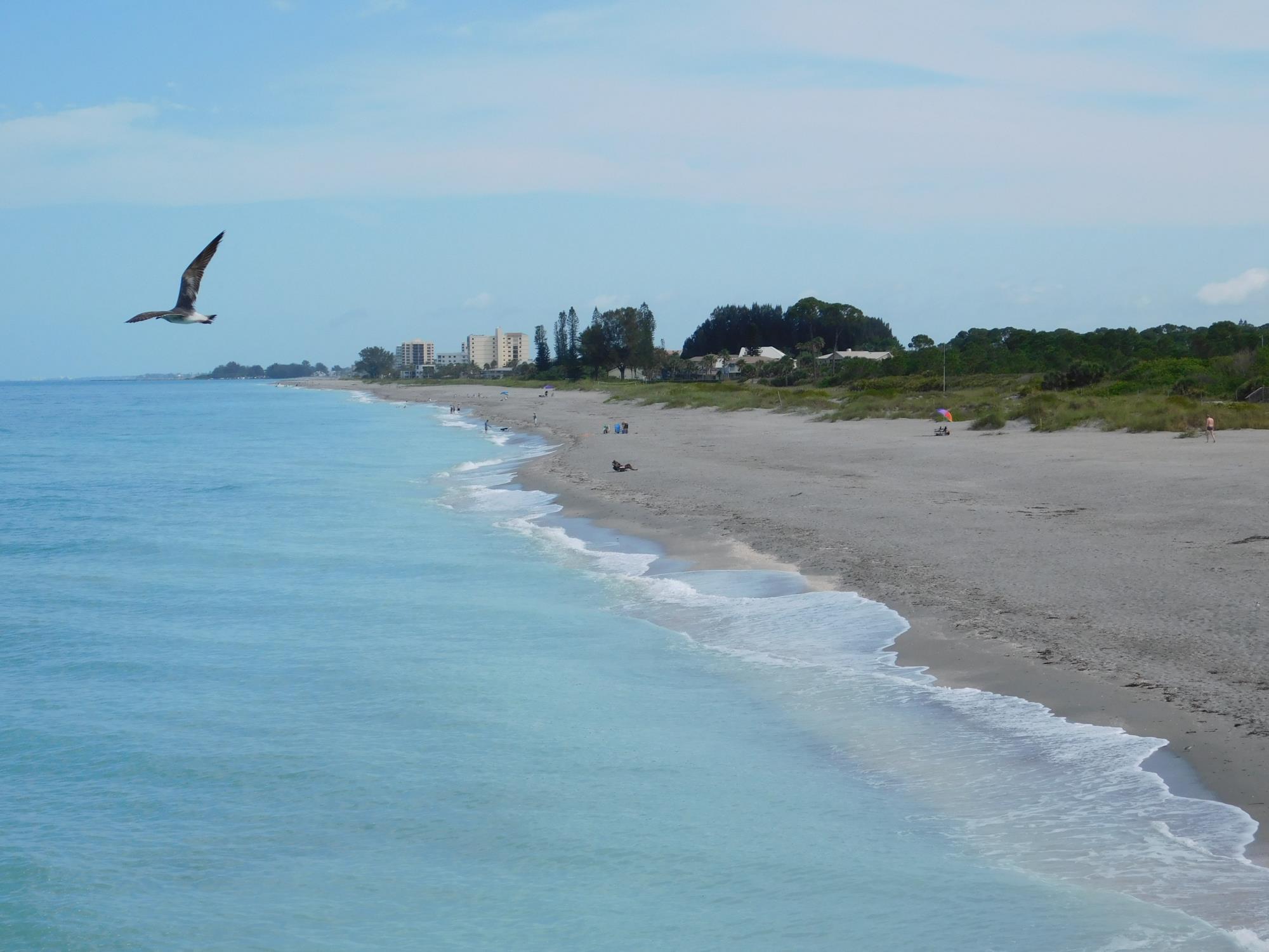 Venus Beach Florida >> Venice Fl City Of Venice Fl Home